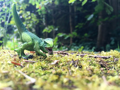 Rawr! (240:366) (Lost Star) Tags: 366the2016edition 3662016 day240366 27aug16 toys dinosaur schleich toyphotography