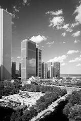Millennium Park, Chicago. July, 2016. (Guillermo Esteves) Tags: chicago illinois chicagoloop cityscape cloudgate landscape fujifilmxt1 blackandwhite unitedstates us
