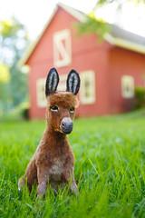 Donkey_6 (kdc123) Tags: donkey furred breyer custom ooak chestnut miniature