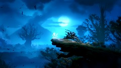 387290_20160917152210_1 (fettouhi) Tags: ori the blind forest