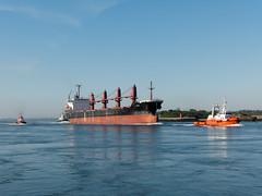 Altis | Barra de Aveiro (Fábio-Pires) Tags: altis navio ship vessel naviograneleiro graneleiro bulkcarrier 9065572 aveiro barra portodeaveiro aveiroharbour portugal terminalintermodal ao ar livre barco veículo orla água
