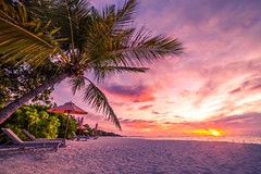 Stunning Light at Sunset (icemanphotos) Tags: holiday travel sky solitude loungers sunbed seascape sunrise theplacetobemaldives luxresort luxsouthariatoll maldives indianocean palm trees beam light magical dreamy love romantic joy