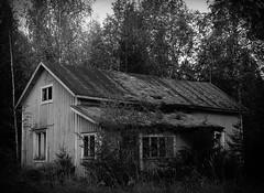 No one lives here anymore (markorsr) Tags: abandonedhouse blackandwhite bw fomapan fomapan100 fomapanfilm mamiya mamiyam645 monochrome xtol xtol11 reciprocity