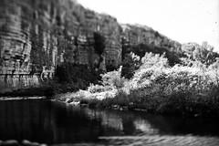 Chassezac tilt (salparadise666) Tags: nils volkmer busch pressman c 2x3 fomapan 100 sheet film caffenol rs france cevennes landscape bw black white nature river rural contrast wollensak 101mm