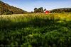 Agrarian (Culinary Fool) Tags: palouse usa washington 2016 hill red palousescenicbyway wa brendajpederson travel horsetail photography culinaryfool roadtrip farm ranch may barn travelwa 2470mm28