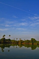 Konkan........ (kailas bhopi) Tags: konkan 1855mm reflection water nikond5100 clouds sky coconut landscape