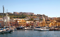 Marina di Sancio Cattolico - Isola di Procida (Italy) (Andrea Moscato) Tags: andreamoscato europe italia mare sea city citt cityscape baia barca boat yacht house case architecture architettura blue yellow green tree water acqua view vista vivid day shadow light landscape mediterraneo mediterranean island
