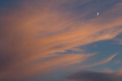 September Moon (ArtGordon1) Tags: september summer 2016 evening moon clouds cloud sunset davegordon davidgordon daveartgordon davidagordon daveagordon artgordon1 london england walthamstow sky