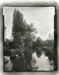 PRINT oilprint 011 (charlesguerin) Tags: wollensak raptar rawlins oilprint landscape waterscape trees fabriano artistico gelatin ink