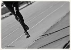 Trail  Nicola Roggero (Nicola Roggero) Tags: sport trail sestriere run running jump course corsa elegance shot nikon d5300 lines shadows jumping nicolaroggero black white minimalism
