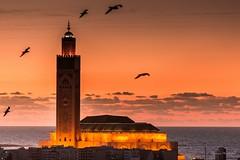 Mosque Hassan II - Casablanca (Bouhsina Photography) Tags: casablanca maroc morocco mosque hassan2 hassan coucher sunset soleil oisaux birds minaret sea mer atlantique ocan canon 5dii bouhsina bouhsinaphotogrphy 2016 lumire light soir ciel sky nuages clouds wow