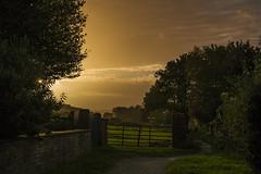 Evening sun (jackharrybill) Tags: haworth sun evening light glow golden brontes westyorkshire