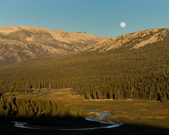 Full Moon and Tuolumne Meadows, Yosemite National Park (4 Corners Photo) Tags: 4cornersphoto afternoon california color evergreen forest landscape meadow moon mountains northamerica potholedome rural scenery shadow sierranevada sky summer tree tuolumnecounty tuolumnemeadows tuolumneriver unitedstates yosemitenationalpark us lunar