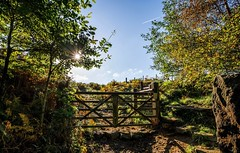 Five Bar Gate... (johngregory250666) Tags: lane peak district uk derbyshire rural nature british countryside camera lens green yellow orange stone nikon nikkor hiking walking lines clouds sky blue moss lichen out brook glow grass imagesofengland amazing sunlight water light sun outdoor grassland field landscape hill trees plant serene forest moors ridge great national park mountain moor moorland dale new mountainside august d5200 rock formation winhill bamford edge flower outside cloud people gate starburst morning