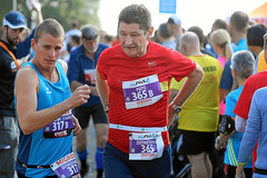 Hallwilerseelauf: Jeder ein Sieger beim Halbmarathon