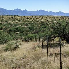 1610 Fence (c.miles) Tags: arizonastatetrustland cathedralrock fence mountkimball santacatalinamountains tablemountain windowpeak