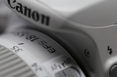 Camera (AvesAg) Tags: canon eos macromondays handlewithcare canoneos100d white weis