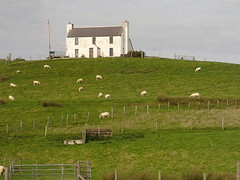 A Rural Tradition (kzuhr) Tags: lerwick shetlandislands scotland