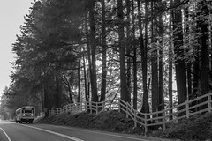 End of Summer - May Valley BW (Don Thoreby) Tags: mayvalley mayvalleywashingtonstate horsefarms farms barns mayvalleyhighway squakmountain autumn fall backroads countrylanes ranch horseranch ranchfence fenceline