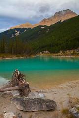 Bunny? (stevenbulman44) Tags: mountain emerald green color landscape canon 2470f28l britishcolumbia tree serene sky