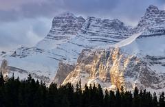 Golden Mount Rundle (Kristin Repsher) Tags: alberta banff banffnationalpark canada canadianrockies df goldenhour mountrundle mountains nikon rockies rockymountains rundle sunrise telephotolandscape twojack twojacklake