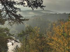 podzimn nlada (Jaromr Soukup) Tags: autumn podzim vltava dvkmen