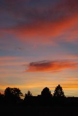O helles Wort, wie selig ist ein Mensch (amras_de) Tags: abend vespre vecer aften evening vespero ilta vespere sera vesper vakaras avond kveld seara forenicht kvll aksam sonnenuntergang escureixito ocs soumrak solnedgang sunset ocaso pikeseloojang auringonlasku coucherdesoleil zalazaksunca tramonto soloccidens saulelydis riets zonsondergang soleglad zachdslonca prdosol apus scurata dayset zpadslnka solnedgng wiesbaden
