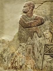 Closeup of statesman Mentu-em-hat from a Relief of statesman Mentu-em-hat and Anubis from Thebes, Egypt Late Period Late 25th to early 26th Dynasty 665-650 BCE Limestone (mharrsch) Tags: relief statesman egypt mentuemhat anubis god deity religion worship funeraryart limestone 25thdynasty 26thdynasty 7thcenturybce ancient nelsonatkinsmuseum kansascity missouri mharrsch