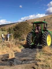 IMG_1432 (Oregon Natural Desert Association) Tags: denny jones ranch weed mat removal 2016 stewardship trips