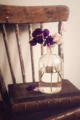 Her Treasures (AJWeiss71) Tags: flower flowers chair book books stilllife bottle purple pink wood wooden vintage antique nostalgia nostalgic bouquet spring summer feminine pretty beauty furniture read reading amyweiss sweetpea sweetpeas floral romance romantic