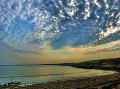 Howick Bay (tina negus) Tags: rumbling kern howick bay mackerel sky northumberland