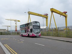 2346 Belfast 08/10/16 (Csalem's Lot) Tags: translink belfast bus metro wrightbus wrights gemini 2346 queensroad sez2346 26c