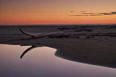 sunset, lake superior provincial park (twurdemann) Tags: autumn beach brilliancefilter cloud driftwood fujixt1 horizon lakesuperior lakesuperiorprovincialpark landscape nikcolorefex nikgraduatednd northernontario ontario ontarioparks pool reflection seascape selection sky sunset tonalcontrast water