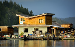 Float Home in Strawberry Island Float House Community on Tofino Inlet (SonjaPetersonPh♡tography) Tags: tofino clayoquotsound ocean longbeach tourists water westcoastvancouverisland vancouverisland nature surfing fisherman whalewatching britishcolumbia canada nikond5200 nikon 2016 westcoast boats boating harbour pacificrimnationalparkreserve bcparks