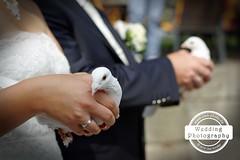 a (uweschaeferphotography) Tags: hochzeitsfotografie hochzeitsfotograf hochzeit hochzeitsplaner wedding weddingphotography photography hoetzelsroda htzelsroda fotograf hochzeitsfotos hochzeitsbilder creuzburg uweschaefer uweschfer eisenach