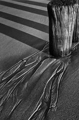Strand (efgepe) Tags: cadzand holland niederlande oktober strand schatten sand spuren traces bw sw schwarzweiss schwarzundweiss blackwhite silverefexpro nik lightroom pentaxk5 pentax