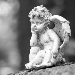 Angel figurine (schauplatz) Tags: deutschland stuttgart waldfriedhof blackandwhite blackwhite schwarzweis schwarzweiss friedhof cemetery figurine skulptur plastik engel angel