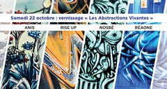 LES ABSTRACTIONS VIVANTES - EXPOSITION (Brin d'Amour) Tags: anis riseup nosb rea graffiti lesabstractionsvivantes exposition larservemalakoff malakoff 92240 brindamour