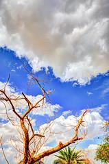 Clouds@Nahda PARK#1