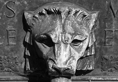 1932, St Mary Redcliffe, Bristol (TempusVolat) Tags: sculpture never church st parish canon bristol eos head tiger mary lion redcliffe gareth sculpted waterspout tempus 60d volat wonfor mrmorodo garethwonfor tempusvolat