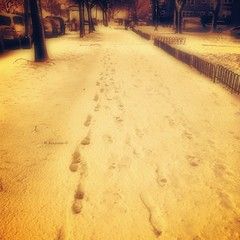 Footprints in Snow II (photophile2012) Tags: winter snow chicago photography footprints iphone marinedrive phoneography
