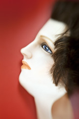 OB-SL-051012-8596 (gp3301) Tags: stilllife halloween mannequin mystery head nobody creepy spooky mysterious colorphotograph lifelikespooky mannequinheadbizarrecreepystilllifeindoorsinsidelifeless mannequinheadbizarrecreepystilllifeindoorsinsidelifelessnobobyfakesurrealdoll