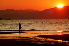 Solitary person walkin in the beach at sunset (Mikel Martnez de Osaba) Tags: ocean sunset red sea summer sky orange sun beach silhouette horizontal sunrise walking relax landscape outdoors person dawn one freedom sand solitude alone loneliness dusk peaceful shore thinking only leisure relaxation solitary tranquil buildingscitycityscapeduskdarkiluminationlightsperson