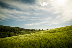 Landscape (gambajo) Tags: sky panorama art nature beautiful landscape deutschland corn rheinlandpfalz andernach phonar phonarnation