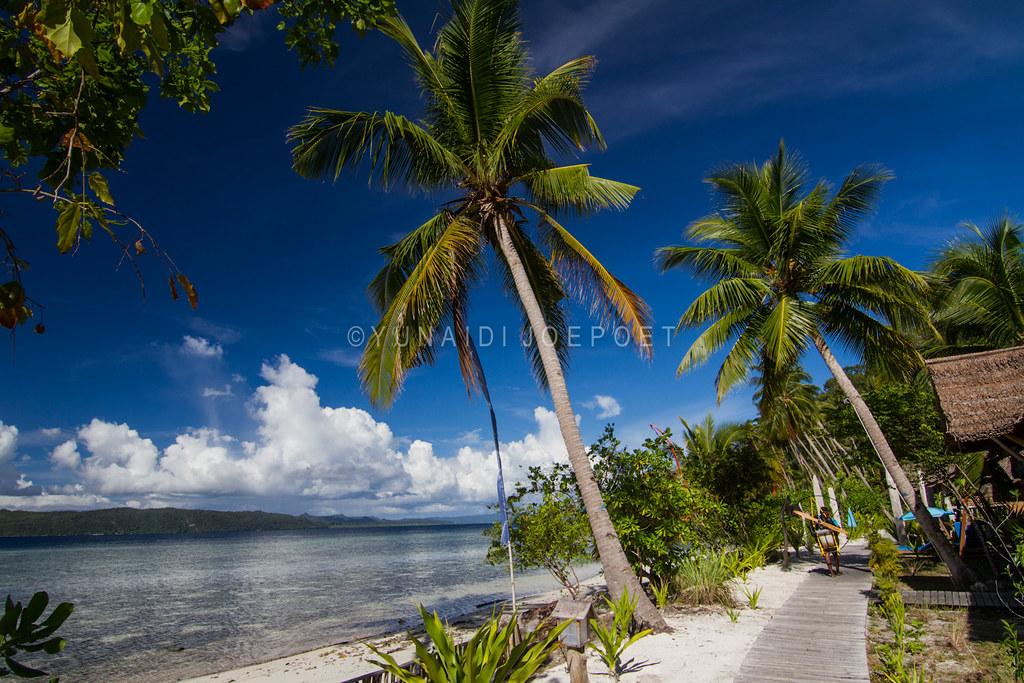The world 39 s best photos of rajaampat and waisai flickr - Raja laut dive resort ...