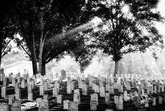 MNC, WWPW 2013 - 02 (JustinDustin) Tags: usa cemetery georgia us unitedstates meetup northamerica cobb marietta attraction 2013 mariettanationalcemetery worldwidephotowalk wwpw wwpw13