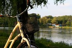 Bike chillin' (Alexis_Ramah) Tags: canon eos350d 350d 50mm