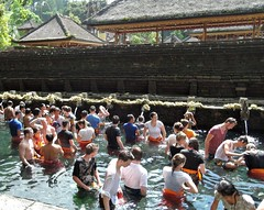 Bali- Cleaning in the Holy Spring (ustung) Tags: indonesia bali holy spring temple praying cleaning nikon