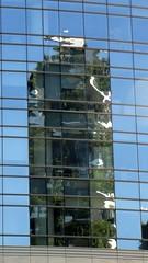 Riflessi Milanesi (Dado 51) Tags: italiy milano boscoverticale torre grattacielo