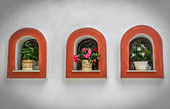 Make a choice ! (dimitrisrentis) Tags: hellas makedonia wall church colour flowers window red green colourful beauty flower pot panagia soumela street macedoniagreece macedonian timeless